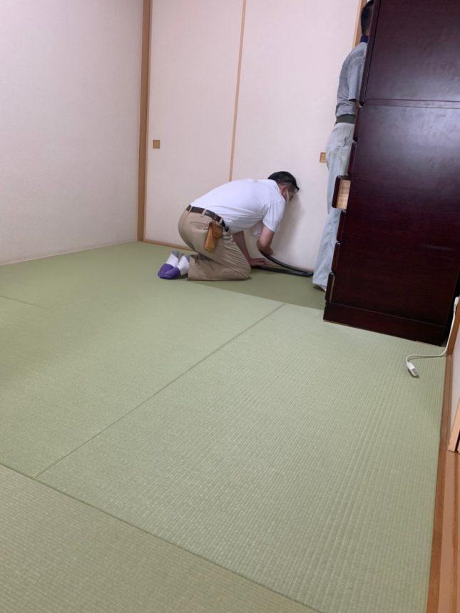 畳張替え 畳 マンション 和室改修 和室リフォーム